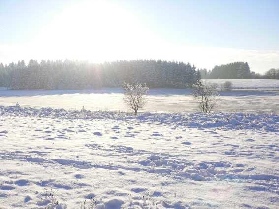 Hiver neige étang matin