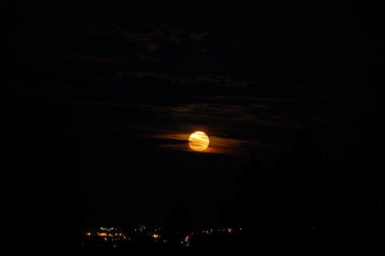 Tiger moon, la lune du tigre