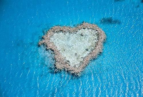 Au coeur de l'île du coeur
