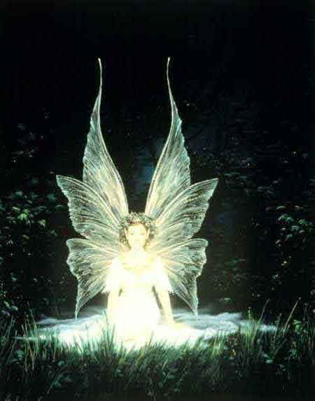 Ange et sa Féerie angélique